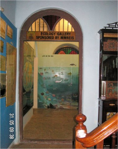 Ecology conservation programme in Nhava through the Marine Museum
